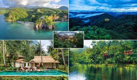 jungle hotels