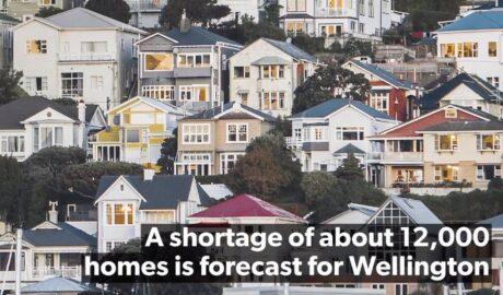 Wellington housing